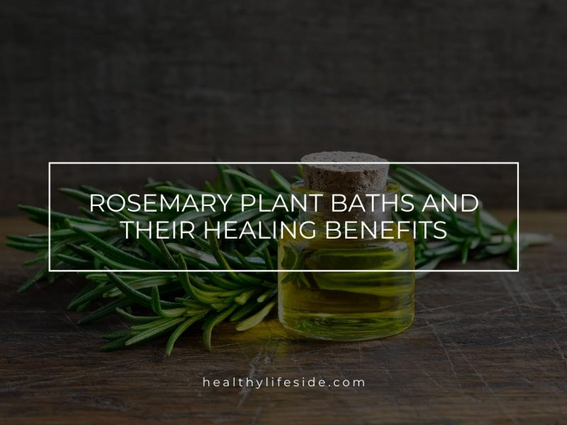 Rosemary Plant Baths And Their Healing Benefits