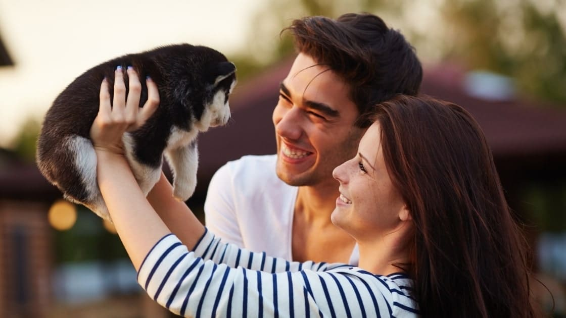 Advantages Of Pets Ownership